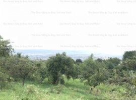 Teren 1200 mp Feleacu