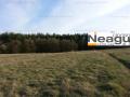 NeaguImobiliare: Labusesti / Balotesti, teren de vanzare in zona de deal / padure,