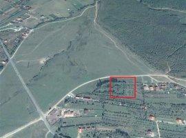 Teren intravilan 1300mp zona Tocile-Paloma