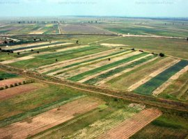 Ferma agricola 303 hectare