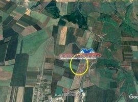 Vanzare teren constructii 43000 mp, Cataloi, Cataloi