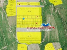 Vanzare  terenuri constructii  980 mp Tulcea, Tulcea  - 12000 EURO
