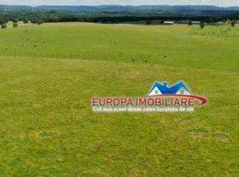 Vanzare teren constructii 15000000 mp, E3, Tulcea