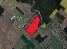 Vanzare teren constructii 623000 mp, Central, Popesti-Leordeni