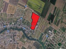 Vanzare teren constructii 200000 mp, Stefanestii de Jos, Stefanestii de Jos