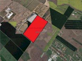 Vanzare teren constructii 350000 mp, Central, Popesti-Leordeni