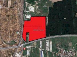 Vanzare teren constructii 250000 mp, Cernica, Cernica