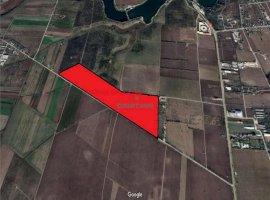 Vanzare teren constructii 400000 mp, Tancabesti, Tancabesti