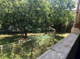 Vila deosebita Lacul Pipera (pretabila familie cu copii)