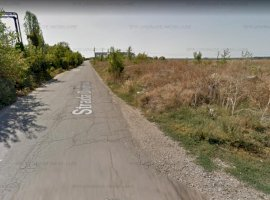 Teren de vanzare zona comuna  Chitila