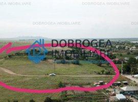 Murighiol, teren intravilan, 5000 mp, aproape de drumul principal, 9 euro/mp