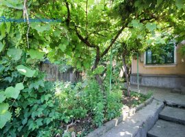 Nicopol, casa 90 m2, teren 330 m2, dechidere 12 m2, garaj
