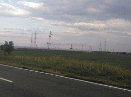 Vanzare teren constructii 60000 mp, Lipia, Lipia