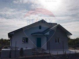 Vila pe parter cu 4 camere in Domnesti