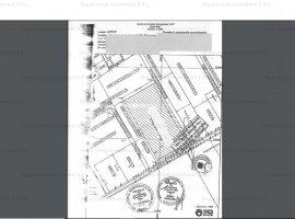 Teren Intravilan | Stradal | 19500 MP | Zona Pipera