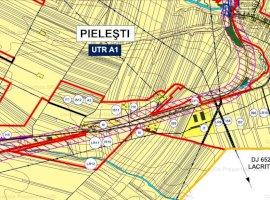 Teren intravilan cu potential de investitie - Pielesti, 9 km de Craiova