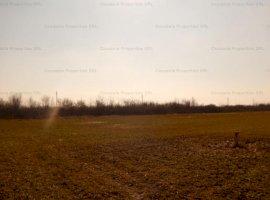 Teren arabil 2958 mp, Clinceni, Ilfov