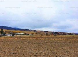 Teren extravilan-arabil 5.049 mp, Herina - Bistria-Nasaud