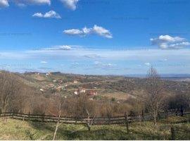 Teren intravilan 2.600 mp, Podgoria - Oradea, Jud. Bihor