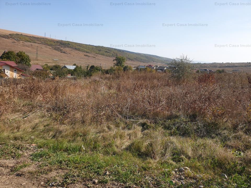 https://expert-casa.ro/ro/vanzare-construction-land/vanatori-iasi/teren-intravilan-vanatori_2694