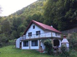 Casa de vacanta 1800 mp de teren in Luncani jud Hunedoara