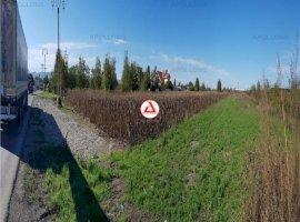 Vanzare teren constructii 7000 mp, Rusi-Ciutea, Rusi-Ciutea