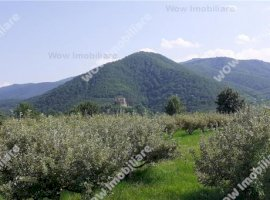 Vanzare teren constructii 2339 mp, Cisnadioara, Cisnadioara