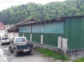 Casa Voineasa - licitatie