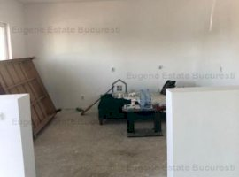 Duplex 4 camere, Domnesti, Olteni