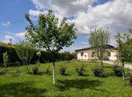 Vila 9 camere Domnesti, pretabil Gradinita/Afterschool