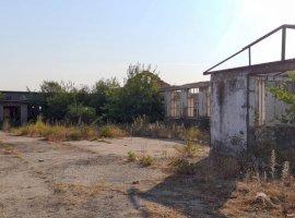 Orbeasca de Jos teren intravila 28500 mp +constructii