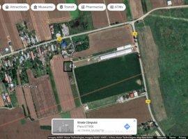 Teren intravilan - agricol Ciolpani - Piscu