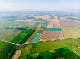 Teren în zona industrială Pecica 13,4 hectare.