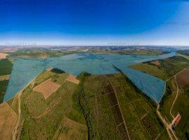 Teren 605 hectare Recaș