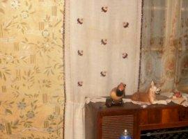 Vanzare  casa  4 camere Dambovita, Buciumeni  - 14000 EURO