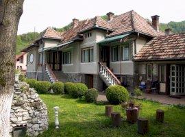 Vanzare  casa  6 camere Mures, Rastolita  - 55000 EURO