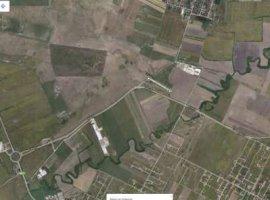 Vanzare  terenuri agricol Timis, Covaci  - 0 EURO
