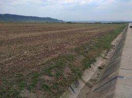 Vanzare  terenuri constructii  7000 mp Cluj, Luna  - 0 EURO