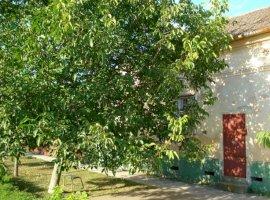 Vanzare  casa Timis, Cenei  - 25000 EURO