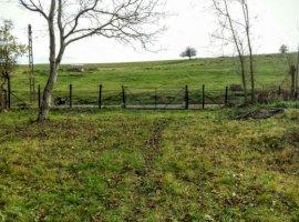 Vanzare  terenuri constructii  1277 mp Timis, Lucaret  - 9000 EURO