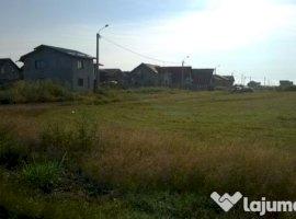 Vanzare  terenuri constructii  874 mp Timis, Dudestii Noi  - 0 EURO