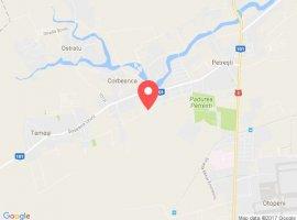 Vanzare  terenuri constructii  6000 mp Ilfov, Corbeanca  - 0 EURO