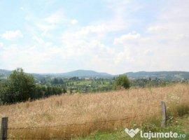 Vanzare  terenuri constructii  5500 mp Cluj, Dangau Mare  - 27500 EURO