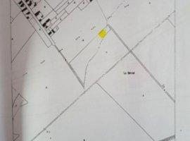 Vanzare  terenuri constructii  1300 mp Mures, Curteni  - 19500 EURO