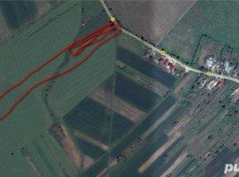 Vanzare  terenuri constructii  6000 mp Prahova, Pleasa  - 56000 EURO