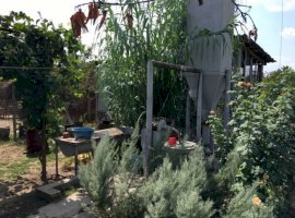 Vanzare  casa Dolj, Cosoveni  - 50000 EURO