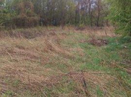 Vanzare  terenuri constructii  1500 mp Prahova, Cornu  - 16000 EURO