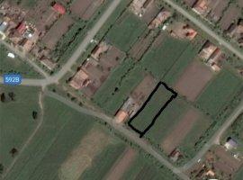 Vanzare  terenuri constructii Timis, Tormac  - 6000 EURO