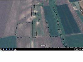 Vanzare  terenuri agricol Iasi, Aroneanu  - 0 EURO
