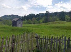 Vanzare  terenuri constructii  10000 mp Suceava, Vama  - 0 EURO